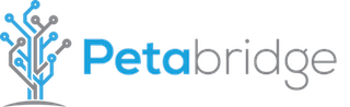 Petabridge - helping developers discover entirely new ways to take on audacious challenges..